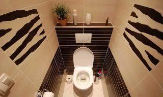 Фото варианты Дизайн туалета в Казани