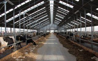 Строительство сельскохозяйственных зданий и сооружений